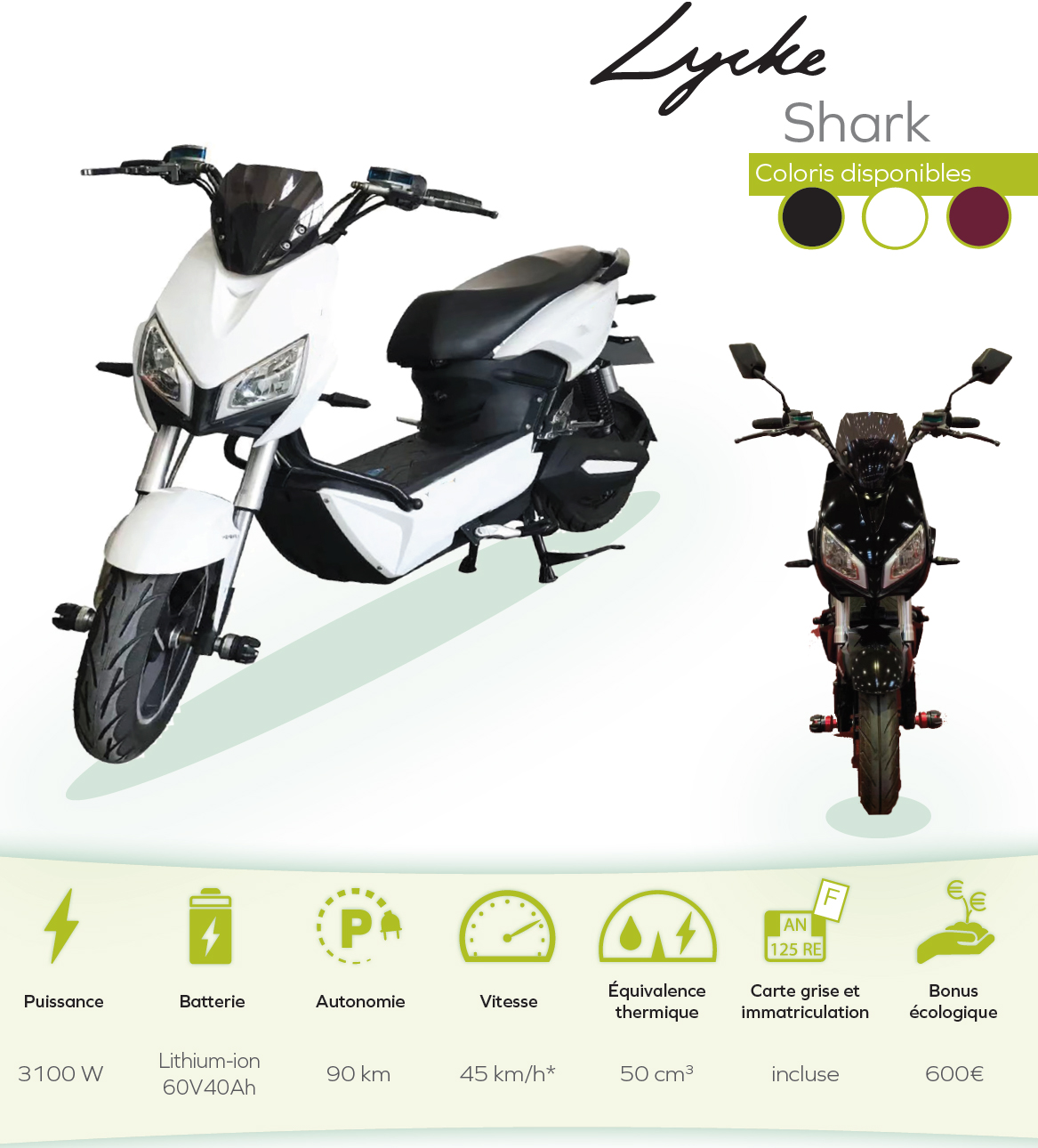 shark-3100W-60V40Ah.JPG